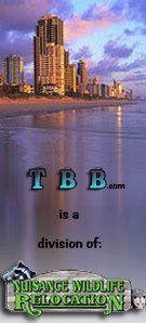 TBB is a division of Nuisance Wildlife Relocation, Inc.